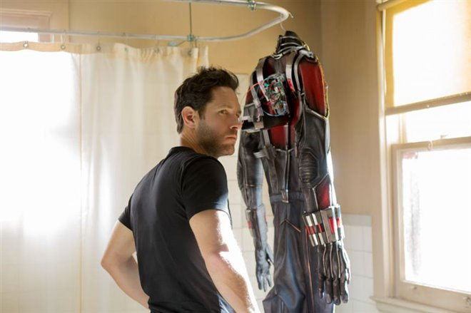 Ant-Man Photo 14 - Large