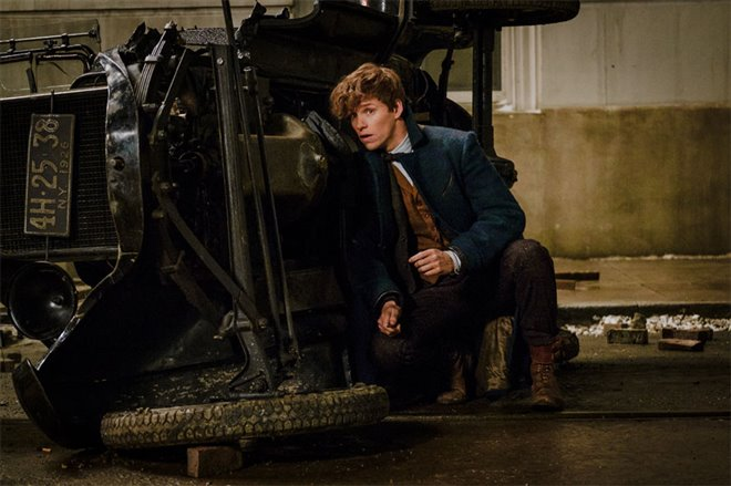 Fantastic Beasts and Where to Find Them Photo 13 - Large