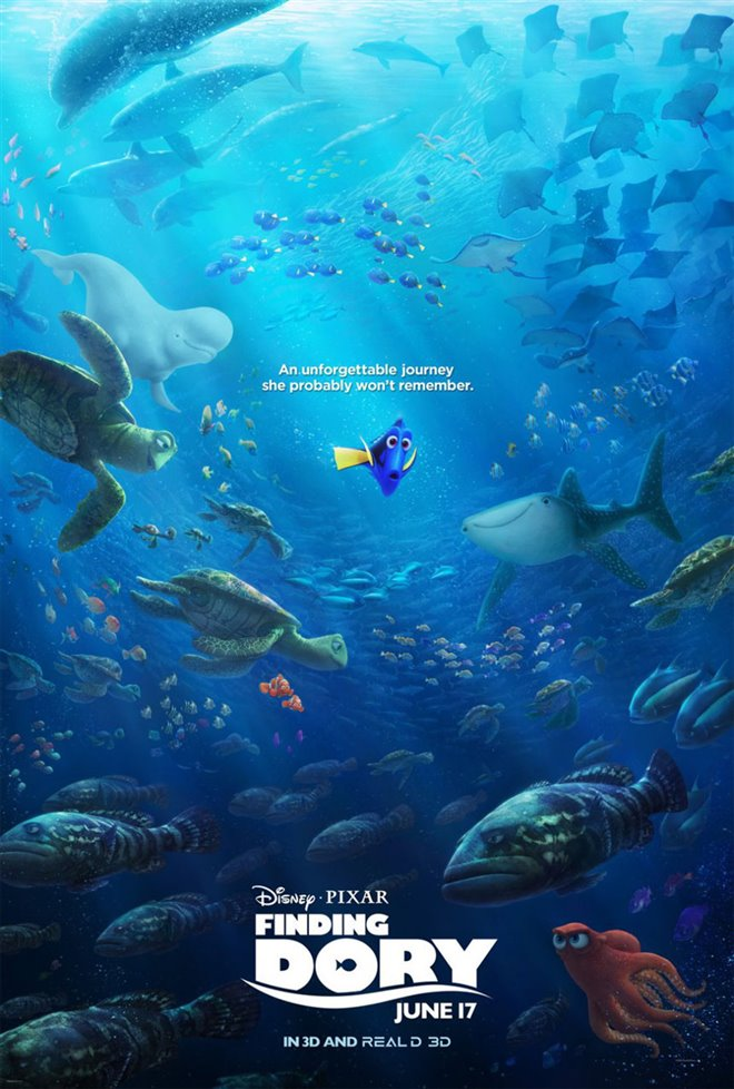 Finding Dory Photo 29 - Large