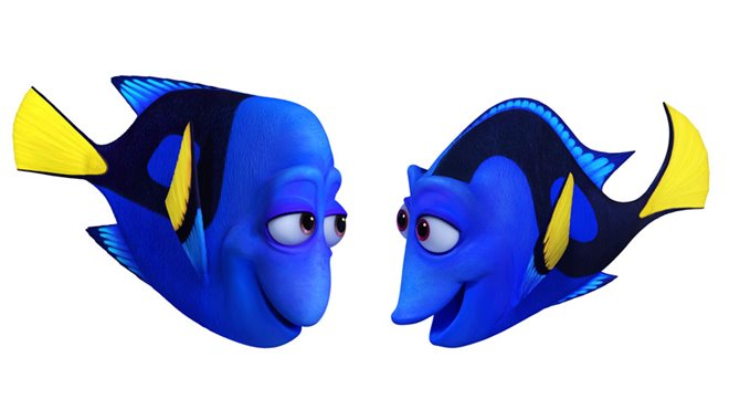 Finding Dory Photo 13 - Large