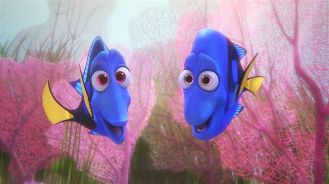 Finding Dory Photo 23 - Large