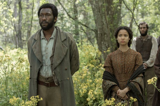 Free State of Jones Photo 13 - Large