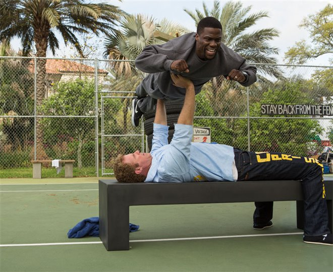 Get Hard Photo 4 - Large
