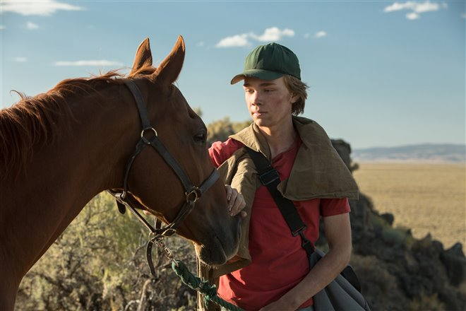 Lean on Pete Photo 11 - Large