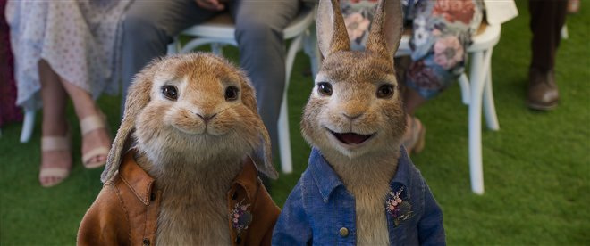 Peter Rabbit 2: The Runaway Photo 8 - Large