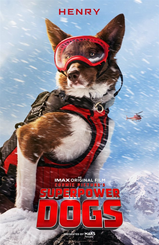Superpower Dogs Photo 6 - Large