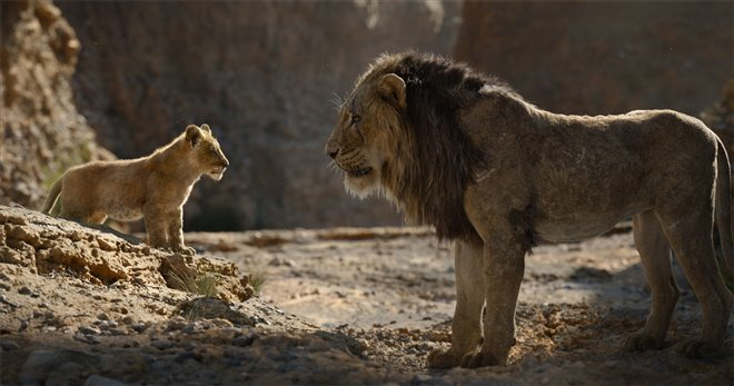 The Lion King Photo 27 - Large