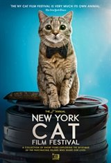 2019 NY Cat Film Festival Movie Poster