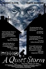 A Quiet Storm (2016) Large Poster
