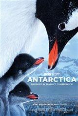 Antarctica Movie Poster