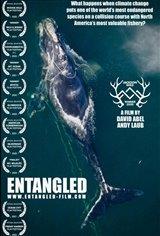 Entangled Movie Poster