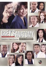 Grey's Anatomy: The Complete Tenth Season Large Poster
