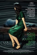 Long Day's Journey Into Night 3D Movie Poster