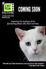 NY Cat Film Festival Program 1 Movie Poster
