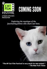NY Cat Film Festival Program 2 Movie Poster