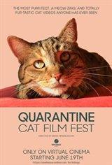 Quarantine Cat Film Festival Large Poster