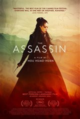 The Assassin Large Poster