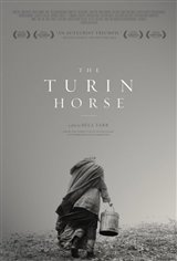 The Turin Horse Large Poster