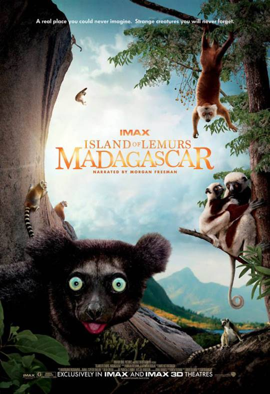 Island of Lemurs: Madagascar - An IMAX 3D Experience Large Poster