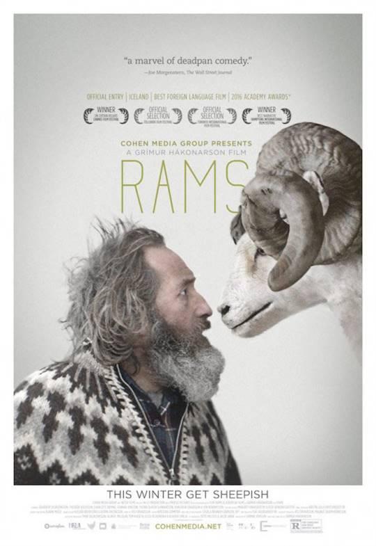 Rams (2016) Large Poster
