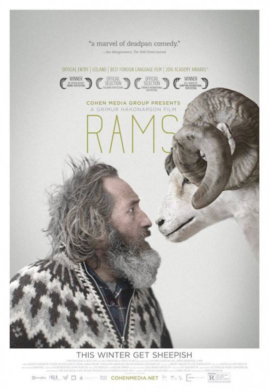 Rams Large Poster