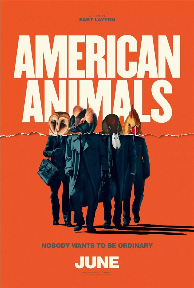 American Animals Large Poster