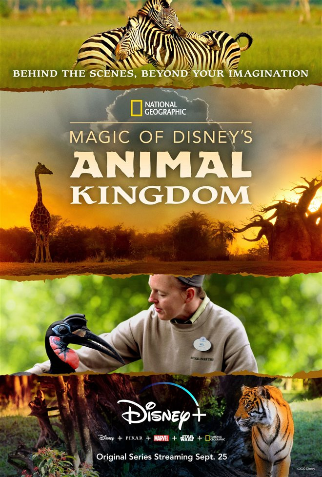 Magic of Disney's Animal Kingdom Large Poster