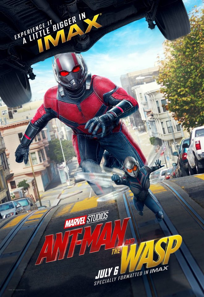 Marvel Studios 10th: Ant-Man and The Wasp (IMAX) Large Poster