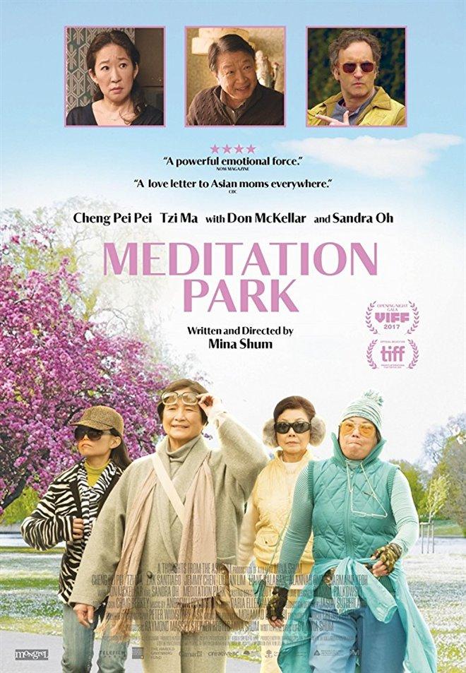 Meditation Park Large Poster