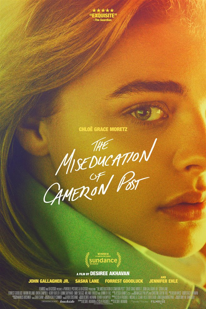The Miseducation of Cameron Post Large Poster