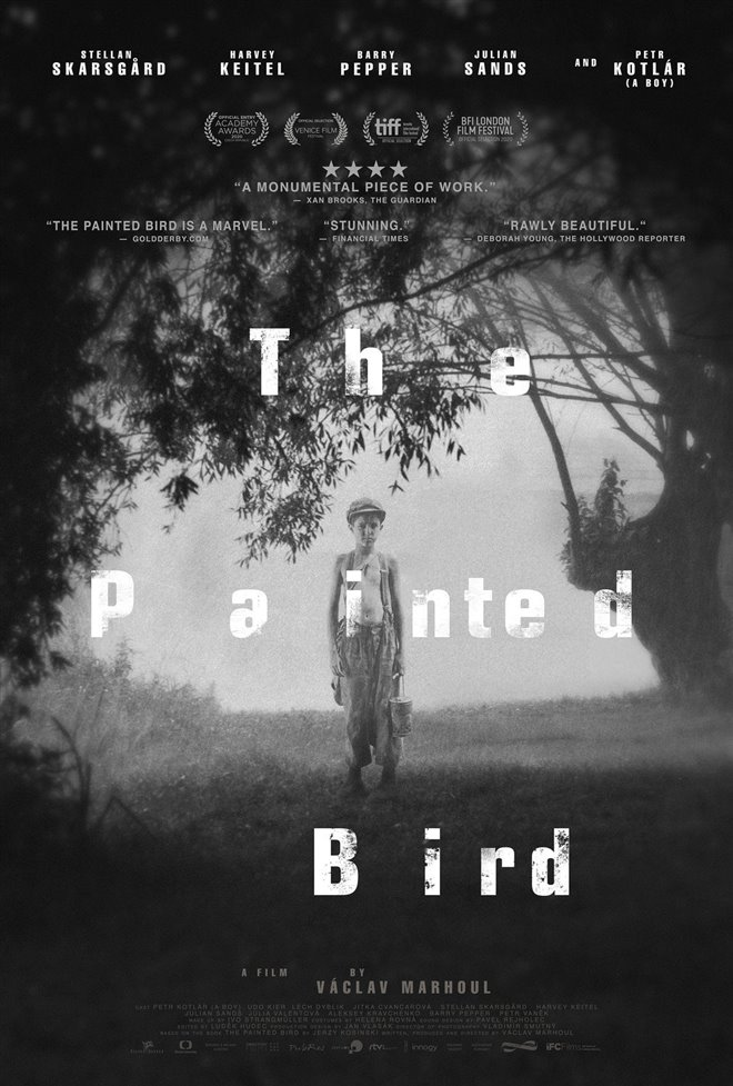 The Painted Bird Large Poster