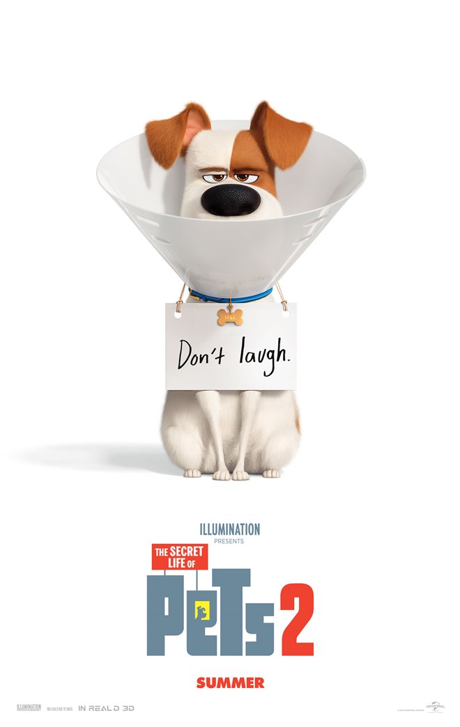 The Secret Life of Pets 2 Large Poster