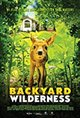 Backyard Wilderness: An IMAX 3D Experience Poster
