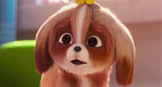 'The Secret Life of Pets 2' - The Snowball Trailer | Movie ...